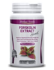 Forskolin EXTRACT Standardized 2000mg Daily